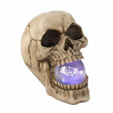 Skull Light-up Orb LED Battery Operated Figurine Halloween Decoration 17294