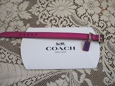 Authentic new Coach dog,cat XS small collar pink with charm