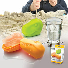 T Rex Fossil Ice Cube Maker from Hoobbe, Fun Dinosaur ice tray mould, Novel gift