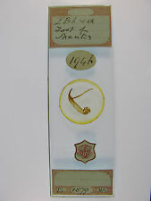 Antique Microscope Slide by John Bramhall. Foot of Mantis. Dated 1879.