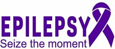 Epilepsy Awareness Ribbon Seize the moment Vinyl Wall Decal or Car Sticker