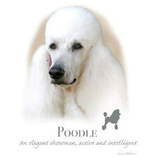 """Poodle Standard White, Dog Fabric w Phrase- One 18"""" x 22"""" Panel-Quilt & Sew"""