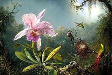 Print Exotic Landscape Orchid Flowers Garden Hummingbird Egg Nest Moonlight