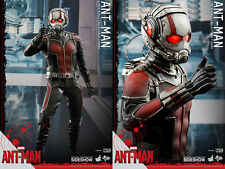 "Hot Toys Marvel Ant-Man Scott Lang Paul Rudd 1/6 Scale 12"" sealed in shipper"