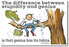 The Difference Between Stupidity and Genius - Albert Einstein - NEW Funny POSTER