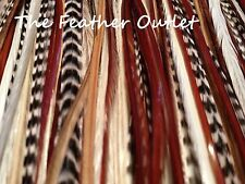 Lot 10 Grizzly Solid Feathers Hair Extensions saddle long skinny real Natural NB