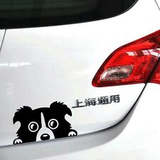 CUTE PEEKING DOG COLLIE PUPPY CAR VAN STICKER VINYL DECAL BODY PANEL BLACK