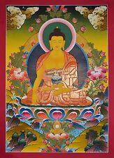 """Shakyamuni Buddha Buddhist Tibetan 30.5"""" x 22.25"""" Thangka Scroll Painting Patan"""