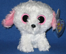 TY BEANIE BOOS - DIVA the BICHON FRISE DOG - MINT with MINT TAGS