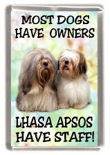 """Lhasa Apso Dog Fridge Magnet (1) """"Most Dogs Have Owners Lhasa Apsos Have Staff"""""""