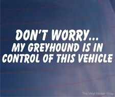 DON'T WORRY MY GREYHOUND IS IN CONTROL OF THIS VEHICLE Funny Car/Van Dog Sticker