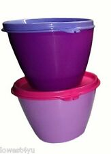 Tupperware bowled over set of 2 new colors used by executive trendy people lunch