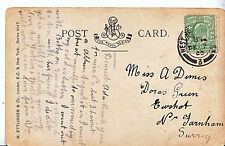 Genealogy Postcard - Family History - Dimes - Near Farnham - Surrey   A1377
