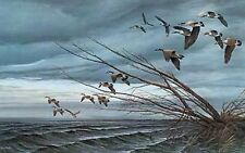 Terry Redlin Canadian Goose print-OVER THE BLOWDOWN