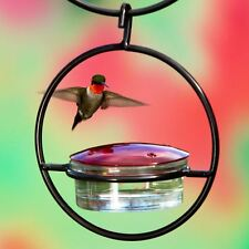"7"" Hanging Sphere Hummingbird Feeder Glass Birds By Couronne Co."