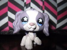 LPS littlest pet shop #672 Cocker Spaniel flower eyes Hasbro STOCKING STUFFER