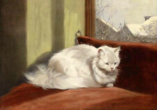 Hand painted oil painting beautiful animal white cat seated by winter window