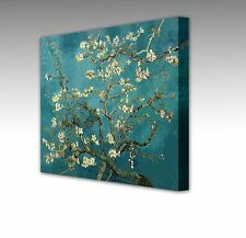 Van Gogh Almond Tree In Blossom Large 12x12 Inch  Framed Canvas Art Print