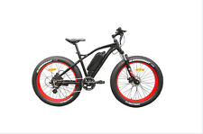 MOUNTAIN BIKE FAT ELECTRIQUE