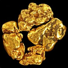 x5 Natural Beautiful Gold Nuggets from Alaska