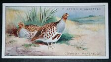 GREY PARTRIDGE       Vintage Colour Card   VGC