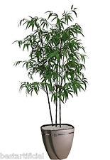 Best Artificial 180cm 1.8 M Noir Bambou Plante Arbre Tropical Bureau