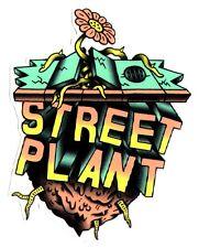 Street Plant Skateboard Sticker - skate board skateboarding skating sk8 new