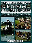 A Photographic Guide to Buying & Selling Horses: All the Information Y-ExLibrary