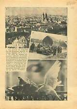 Sino-Japanese War Qingdao Tsingtao China/Tank Normandie/Pigeon 1937 ILLUSTRATION