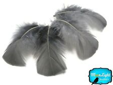 Turkey Feathers, Grey Turkey T-base Plumage Feathers 0.50 oz - 1 Pack