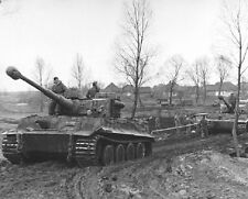 "German VI Tiger Tanks in Ukraine 8""x 10"" World War II Photo 348"