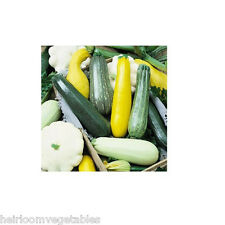 5 variety  Summer Squash seeds mix 30 seeds HEIRLOOM. ***SAME DAY SHIPPING***