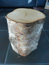"Silver Birch Bark wood Log Decorative Display Log centrepiece.12"" tall. 6-7"" dia"