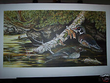 """Northern Lake Woodducks"" by Christine Marshall Limited Ed AP Lithograph #16/25"