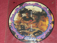 "Fabulous Poodles:  Workshy     rare orig  7""  PICTURE DISC"
