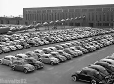 1953 VOLKSWAGEN BEATLES COMING OUT THE FACTORY 8 x 10 Photograph