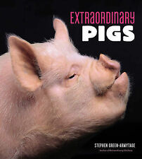 Extraordinary Pigs, Green-Armytage, Stephen, New Book