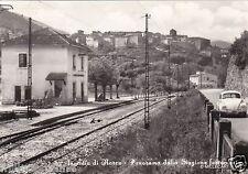 # S. ANATOLIA DI MARCO: PANORAMA DALLA STAZIONE FERROVIARIA - 1966