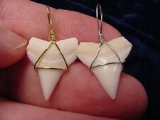 """(s17) 7/8"""" Oceanic White tip tooth Upper GOLD or SILVER wired pendant necklace"""