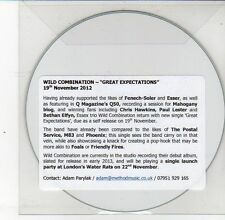 (DS592) Wild Combination, Great Expectations - 2012 DJ CD