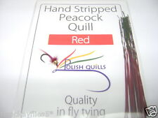 Polish Striped Quills The Finest 1 X Pkt Red,Fly Fishing Trout Buzzers New