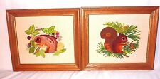 Pr Vtg Erica Wilson Framed Crewel Embroidery Saucy Squirrel Browsing Bunny 1968