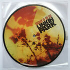LINKIN PARK - SHADOW OF THE DAY rare 7 INCH VINYL RECORD BRAND NEW UNPLAYED