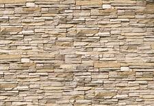 Fototapete Asia Steine Nr.239 Größe: 420x270cm China Tapete Deko Wohnzimmer