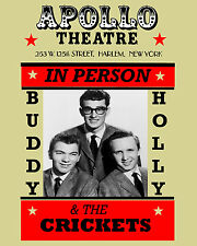 Buddy Holly & the Crickets Concert Poster - 8x10 Color Photo
