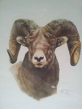 Orig. Signed Gouache Watercolor Painting by AJ McCoy – Rocky Mtn. Bighorn Sheep