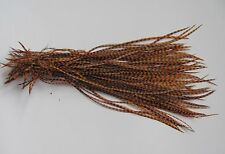 Lot of 100 Metz Rooster Grizzly Saddle Feathers - Dyed Orange - Fly Tying