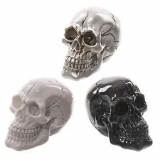 Set of 3 small skull decoration skulls white black silver skeleton ornament