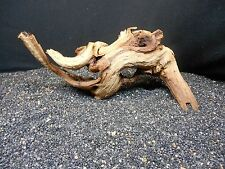 SINKING MOPANI DRIFTWOOD FOR FISH AQUARIUMS REPTILES PLANTS DISPLAY AQUASCAPING