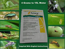 Systemic Insecticide Kill Aphid ,Caterpillar, Psila ,Fly White Scarab - 4g (15L)